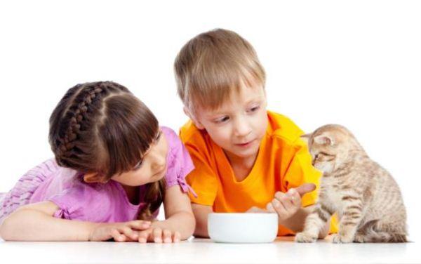cuidar-mascotas-beneficios-en-la-educacion1